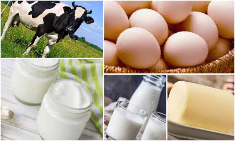 Günlük Süt Nasıl Tüketilmeli?