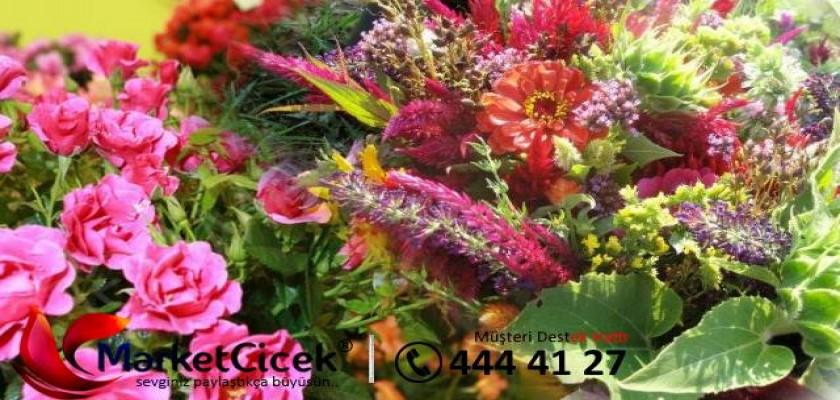 Çiçek Hediye Etmek İçin Özel Günleri Beklemeyeceksiniz Artık