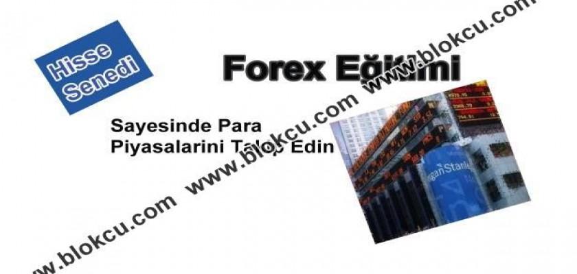 Forex Eğitimi ve Para Piyasaları Hakimiyeti