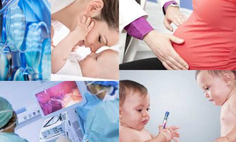 Tüp Bebek Aşamaları Nasıl Belirlenir?